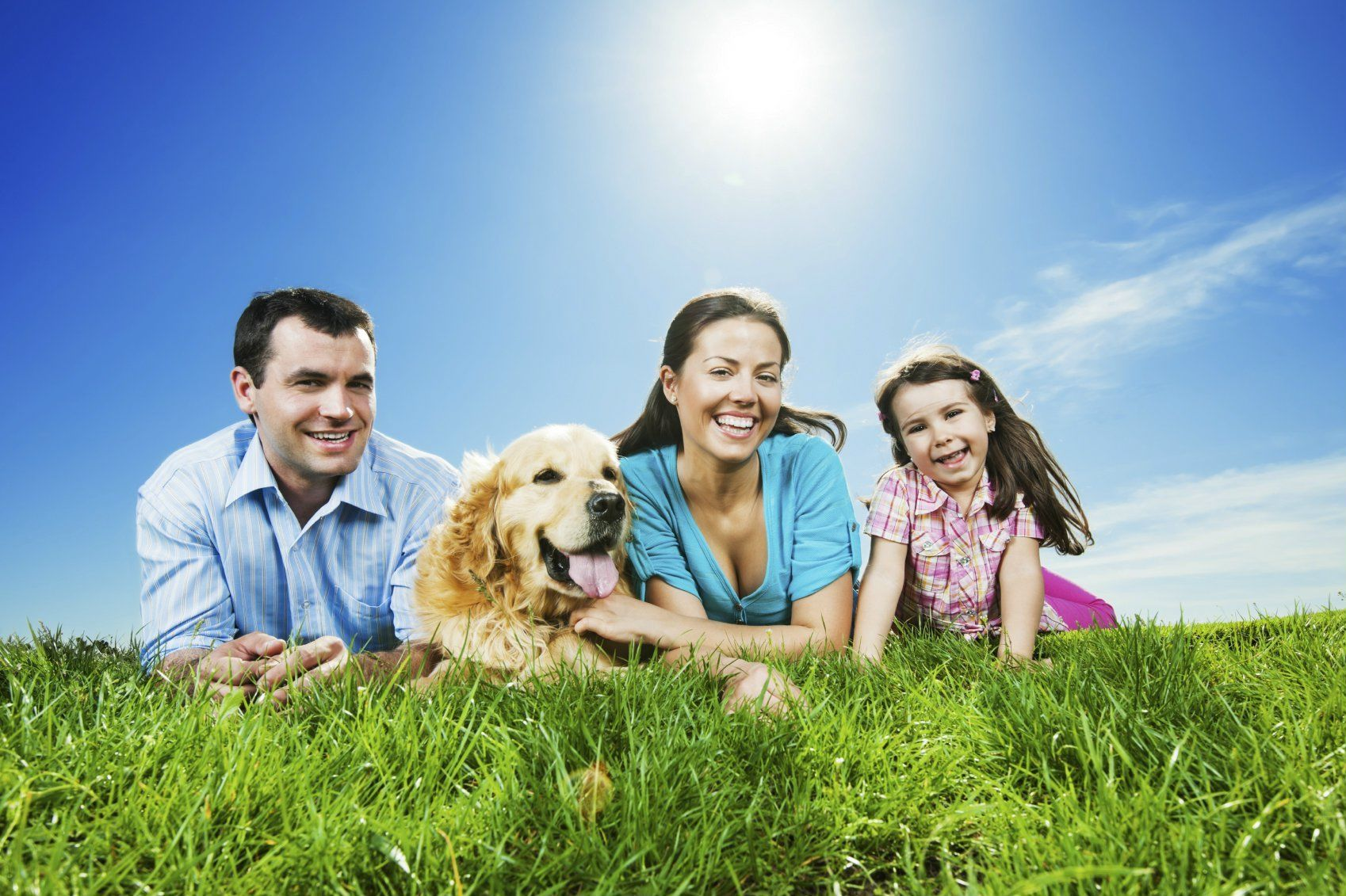 Facts To Consider About Transferring Insurance Policies